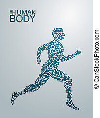 The Human Body concept