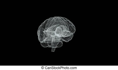The human brain is like a hologram. Plexus. White rotating human brain on a black background. Concept of Medicine and Science. Loop animation.