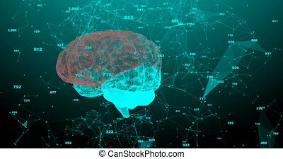 The human brain. Plexus with numbers. Beautiful background. The concept of science, medicine and business. Loop animation.