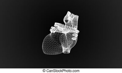The human heart in the form of particles and plexus.