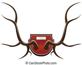 hunting trophy - horns - The hunting trophy - horns of a ...