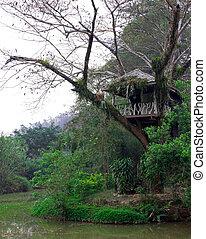 hut on a tree