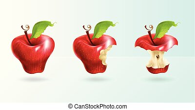 The illustration shows a red apple in three forms: whole, bitten, stump