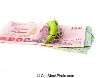 The image of a caterpillar and a money