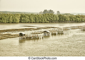 The image of an oyster farm