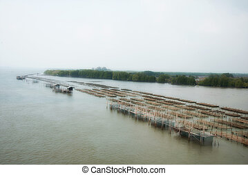 The image of an oyster farm Natural background