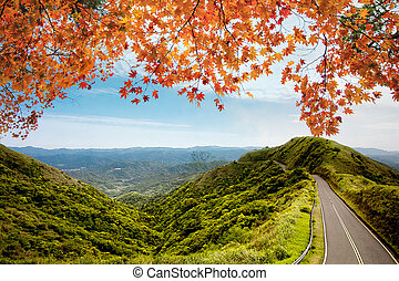 image of road in autumn forest. Autumn landscape