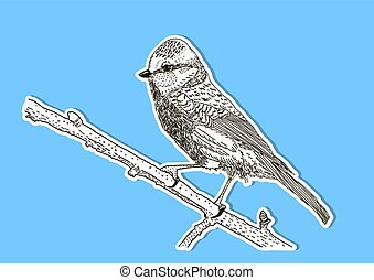 The image of the bird on the branch. Vector illustration.