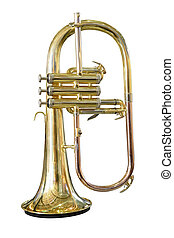 trumpet - The image of trumpet under the white background