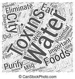 The importance of eliminating toxins Word Cloud Concept