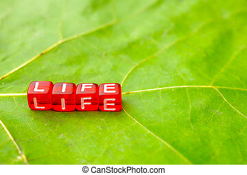 the inscription life is assembled from letters on a cube is on a green sheet with the texture of a leaf of a tree
