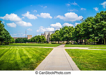 A gorgeous view of the campus while taking a stroll inside of it in Notre Dame, Illinois