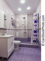 The interior of a bathroom with WC