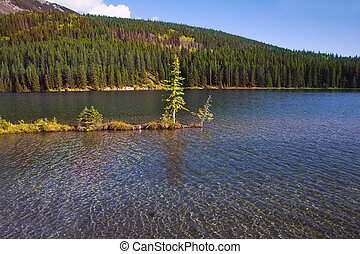 The island in cold Canadian lake