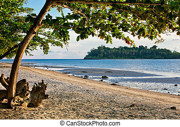 The island of Koh Chang in Thailand.