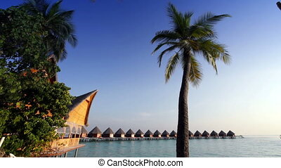 The island with palm trees and traditional tropical hut .