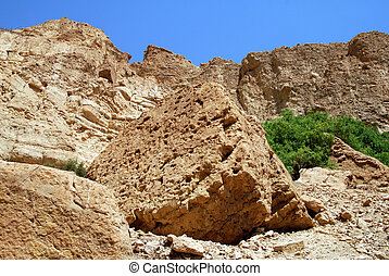 The Judean Desert Israel