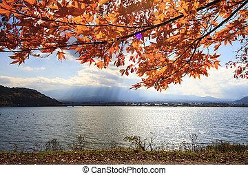 Kawaguchiko beautiful fall scenery and background, Japan -...