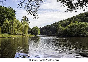 The lake in a summer garden