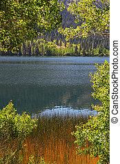 The lake in California