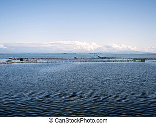 The lake of Mesologi in Greece