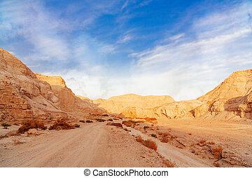 the landscape of Negev desert