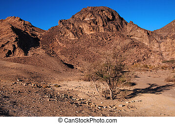 The landscape of Ramon crater Israel