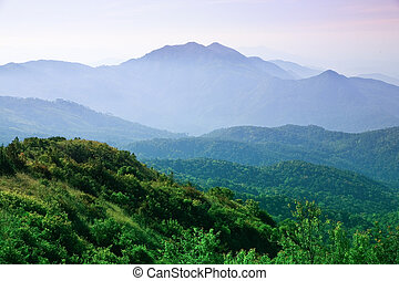 The landscape of the mountains.