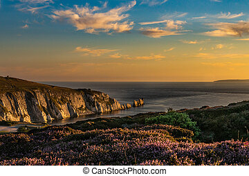 The last of the sun at the Needles