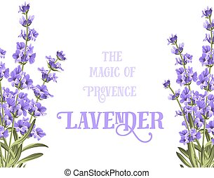 The lavender elegant card. - The lavender elegant card with...