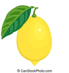 The lemon and leaf. Isolated on white. Vector illustration.