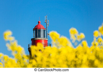 The lighthouse of Bastorf (Germany) with canola field.