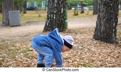 the little child collects yellow leaves in the Park
