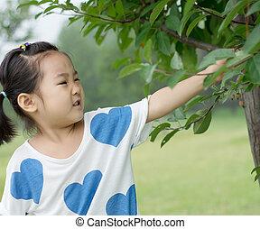 The little girl picking