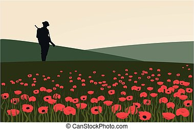 The silhouette of a soldier standing in a field of poppies