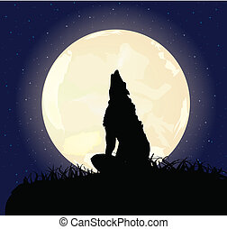 The lonely wolf sits on a rock and howls on the full moon