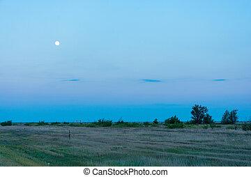 The lunar landscape.