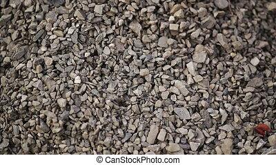 The Macadam Grains - Background of pouring grain macadam