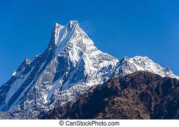 The Machapuchre in the Annapurna region, Nepal