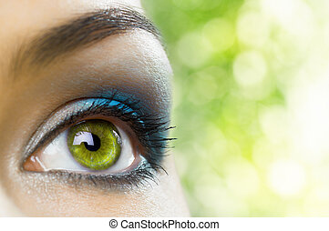 the macro image of the beauty eye