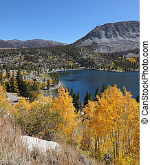 The Magnificent American autumn