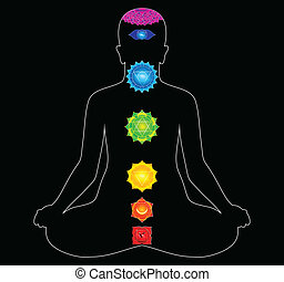 the main chakras in body vector illustration