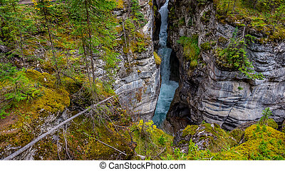 The Maligne River as it flows through the deep gorges of the...