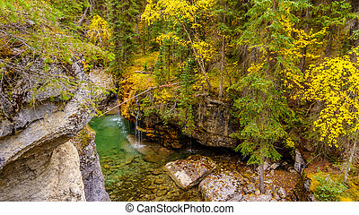 Maligne Canyon in Jasper