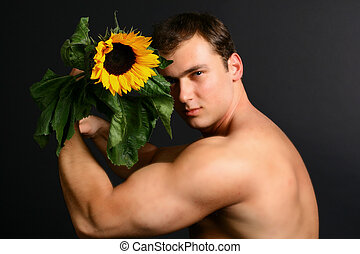 sunflower - The man with a sunflower force a sharp sight