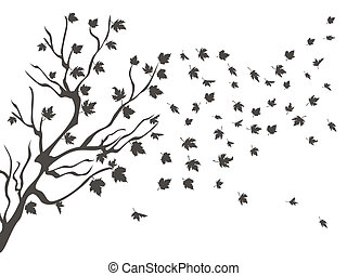 the maples falling background for autumn design