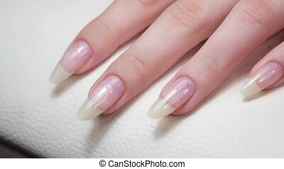 The master makes hygienic manicure to the client in the nail salon. Beautiful manicured nails on female hands