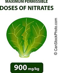 The maximum allowable dose of nitrates in cabbage. Nitrates in vegetables and fruits. Infographics. Vector illustration on isolated background.