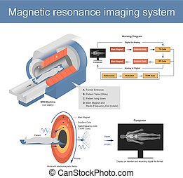 The Mechanical technique used in radio wave to form pictures of the anatomy and the magnetic physiological processes of the body in both health and disease. Illustration graphic.