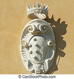 The Medici -  Lorena Coat of Arms
